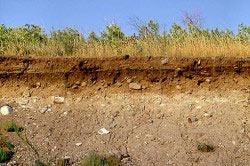 Основанием фундамента служит грунт. Самыми прочными считаются скальные породы.