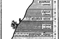 Схема порядка залегания пород.