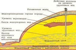 Уровень и глубина залегания грунтовых вод